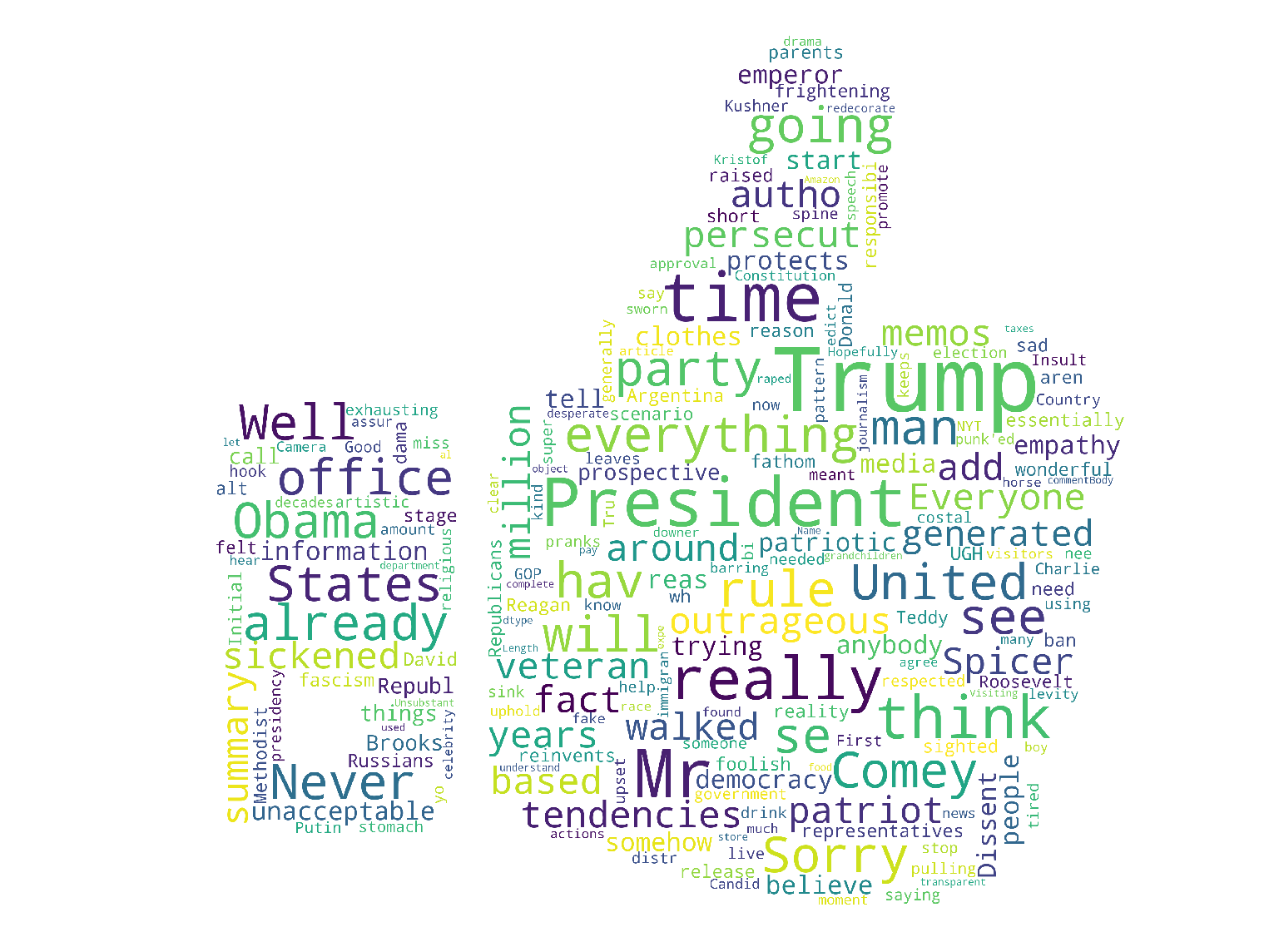 Wordcloud on comments in NYT